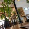【岡山】リピ確定!!イールドタワーコーヒー☕️めっちゃオシャレで落ち着くカフェやまた行きたい店紹介☕️