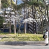 西成で暮らす。23日目 「風体が馴染む」