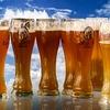 アルツハイマーの予防はサプリよりもビール!それ本当?
