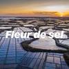 フランス食卓定番のオススメお土産 魔法の塩【ゲランドの塩】