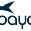 Payara Micro clustered CDI Event Bus -インスタンスを跨いだCDIイベント-