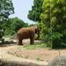 年間パスポート1,200円で1年間行き放題の八木山動物公園は、4/1から新ネーミングライツで「八木山動物公園フジサキの杜」に!