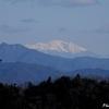 日本 御岳山と南アルプスとルリビタキ(メス)