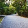 神聖な場所*神社の参道を歩くことで得られる効果