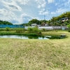 新治里山公園雨水調整池(神奈川県横浜)