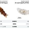クマムシのゲノム情報の解析
