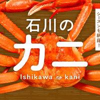 【金沢】冬の味覚の王者「カニ」がおいしい金沢のお店特集!蟹料理やシーズンについてもまとめました!