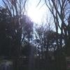 江戸寒かりし冬の道