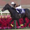 【はじめての競馬】G1有馬記念2018|有力情報・傾向【予想の前に】