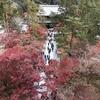 石川五右衛門も見た「南禅寺」の「絶景かな!」の紅葉