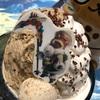 【食レポ】アイスボーン発売記念!アイスモンスターでアイルーかき氷を食べてきた!