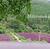 上賀茂神社のやきもちを買い三千院「土井志ば漬け本舗」へ・堂本印象美術館へも行く