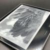 「クジラアタマの王様」(伊坂幸太郎)を無料購読。だからKindle Unlimitedは最高!…と、言いたかったけど、言えなくなった理由