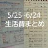 【家計公開】生活費まとめ(H29年5/25~6/24)