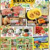 企画 メインテーマ 茨城を食べよう! カスミ 7月12日号