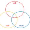 自己分析の「will・can・must」モデルと「be・can・must」モデル