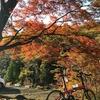奥多摩湖〜柳沢峠〜甲府〜昇仙峡ぶらり旅