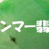 ミャンマー翡翠:Jadeite