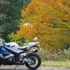 秋の美杉村へツーリング!紅葉が素晴らしいオススメコース!