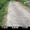 【金曜朝ラン 峠走10km】四国と本州の差