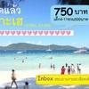 コーラル島1日ツアー タイ在住者特別割引
