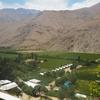 チリの最南端Pisco Elqui(ピスコ エルキ)極上のピスコサワーを飲もう