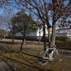 関宿まで自炊サイクリング