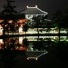 奈良の夜が幻想的な景色に変わる【ライトアッププロムナード・なら2018】(奈良市)