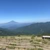 塔ノ岳~丹沢山③ 山で会いたくない人 2021.7.22