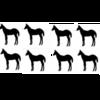 子馬の感染症予防(生産)