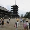 6年生:修学旅行⑤ 奈良公園で班別行動 その1
