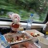 振り返りアルプスを眺めながら列車でGO!さくっとチューリッヒ編