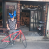 志賀島 サイクリングを楽しむ!! 大宰府天満宮も!!