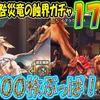 【ドラプロ】護樹竜と咎災竜の蝕界ガチャ176連! 神引きなるか!?