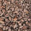 パレドオールのチョコレートのカカオ分について
