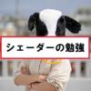 【Unity】シェーダーの勉強を開始!
