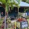 今帰仁の素敵なカフェ『 CALiN  カラン 』をご紹介します。