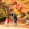 秋色見っけ♪:高岡古城公園
