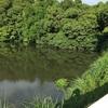 『蓮池』静岡県掛川野池群バス釣り完全攻略マップ
