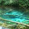 日本にもある!青い池「プリトヴィツェ国立公園」
