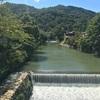 京都に外国人を連れて行くなら?京都嵐山旅行のおすすめコース!