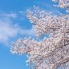 啓蟄 3月節の始まり