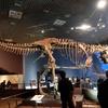 最強の肉食恐竜ティラノサウルスのひみつを徹底分析!『完全解剖ティラノサウルス』は名著だった。