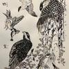 ハンター鳥