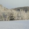 12月は降雪が多い