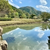 上対馬総合運動公園の池(長崎県対馬)