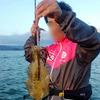 【奥城丸渡船】事前情報とおり渋かったエギング!型は胴長20cm弱でした。