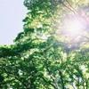 「普段の呼吸の浅さに気づいた!」東京でヨガレッスンを開催しました!!
