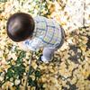 イチョウが色づき始めた外苑前で子どもの写真を撮ったらすごく撮りやすかった話