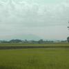 筑波山は雲がかかっていたが、夕方雨が降り出した